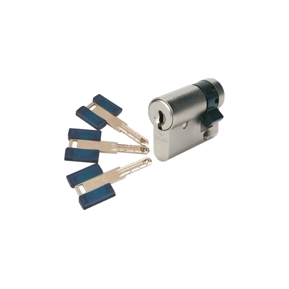 BRICARD Chifral S2 - demi cylindre - supplémentaire - même variure