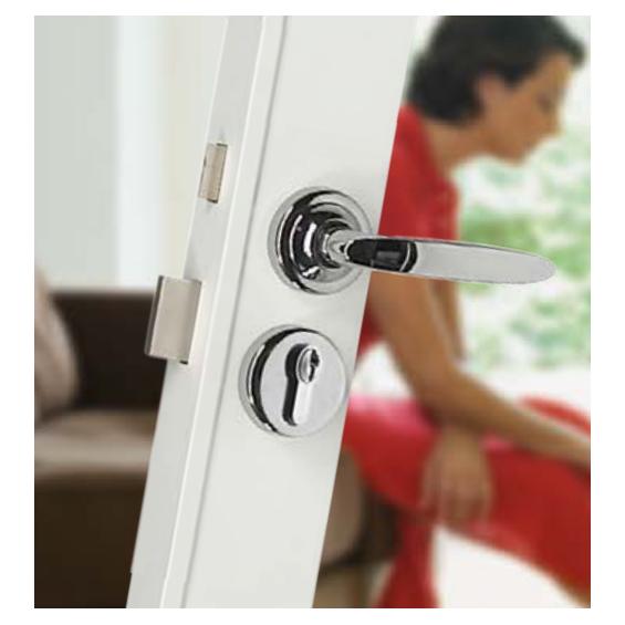 Wall-mounted lock FICHET Primlock européen Kit de remplacement pour porte Sans Souci