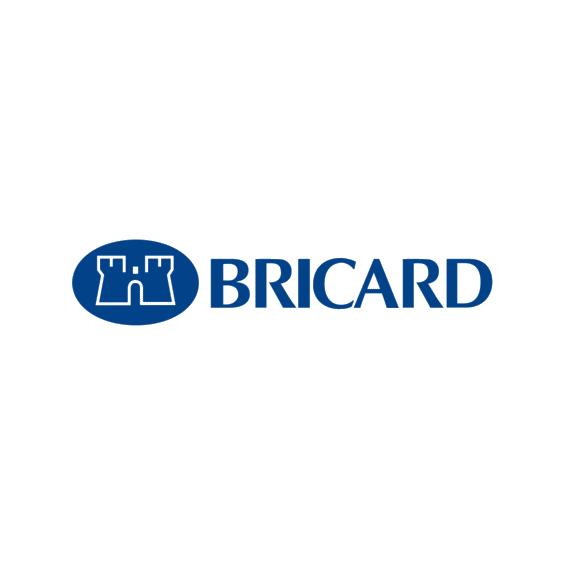 Lock strikers Gâche BRICARD pour serrure BRICARD 5902
