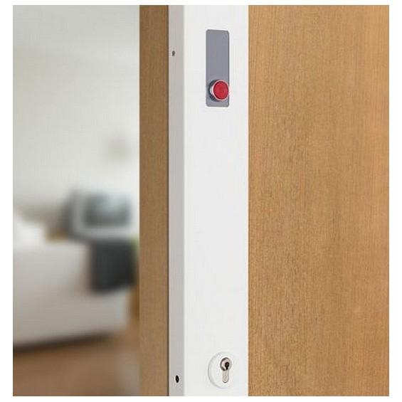 Electronic locks PICARD Telpac