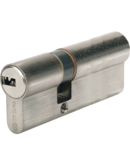 Specific cylinder BRICARD Serial for Vigiblock