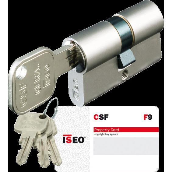 ISEO F9 lock Cylinder